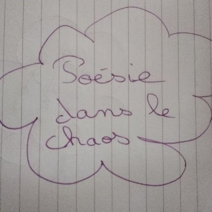 Poésie dans le chaos - #11 - Je suis beaucoup trop