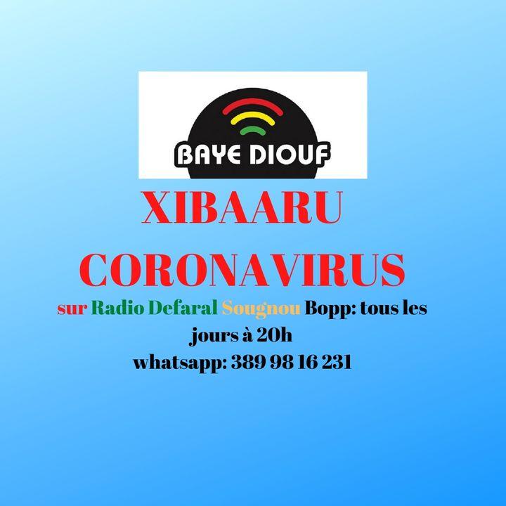CORONAVIRUS : LE JOURNAL PARLE QUOTIDIEN