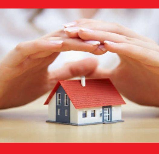 Casas a serem edificadas pela mulher sábia - (Dia Internacional da Mulher)