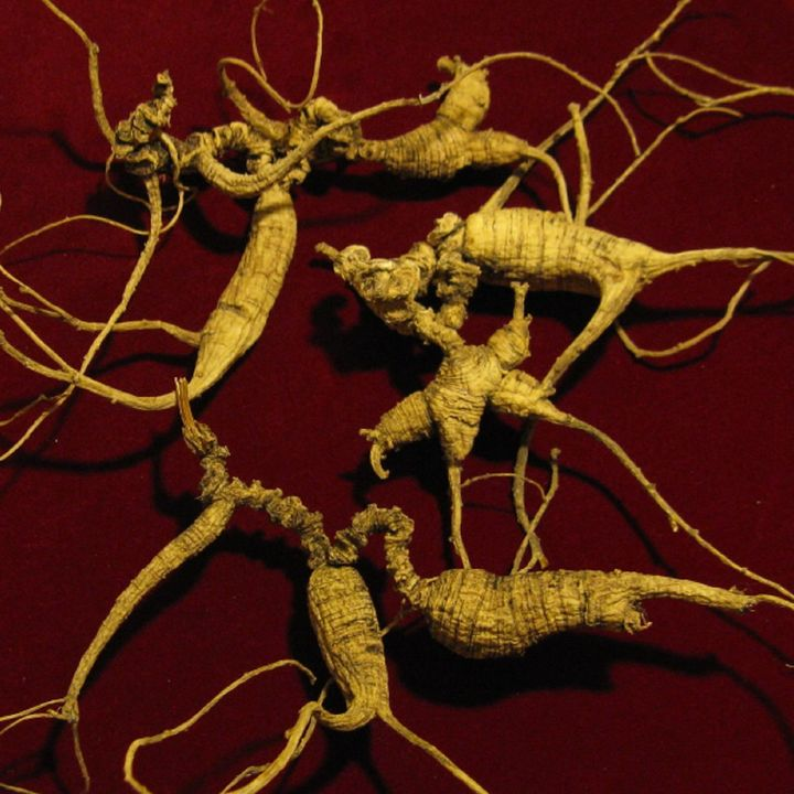 Show 16: Herbal Energetics Simplified