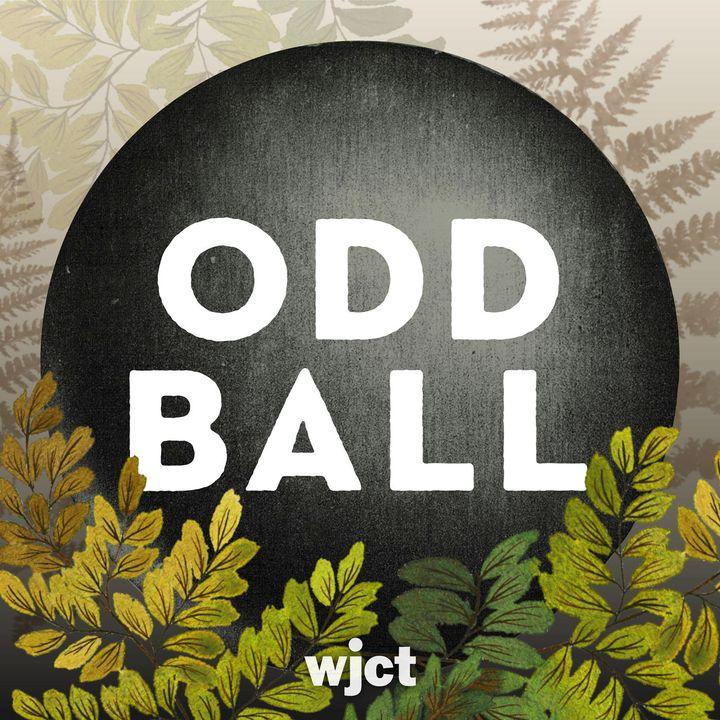 Odd Ball