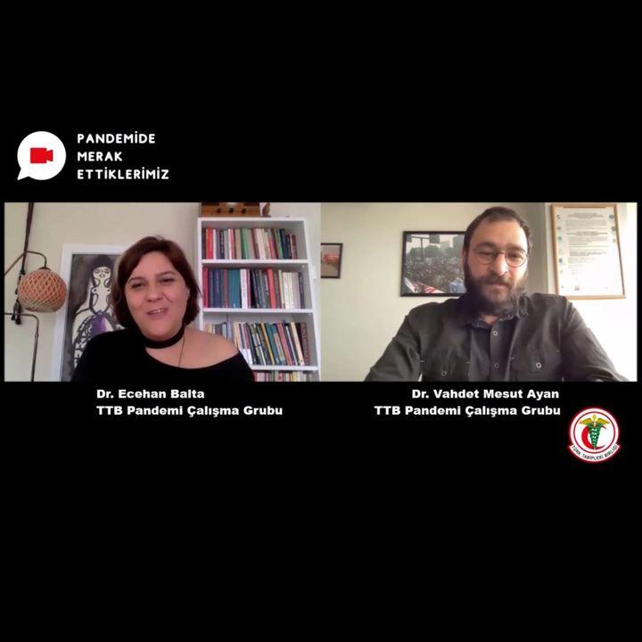 Pandemide Merak Ettiklerimiz #7 - Dr. Ecehan Balta ile COVID-19 Döneminde Gündelik Yaşam
