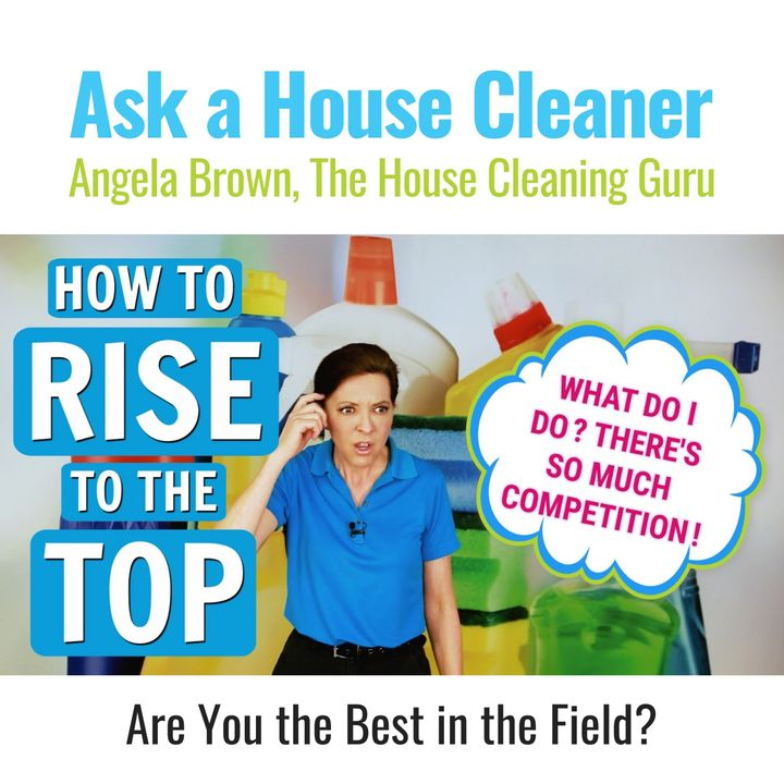 Competition in the House Cleaning Business (House Cleaners)