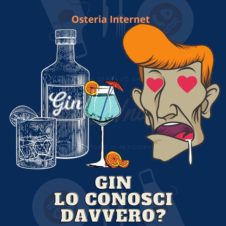 Gin e Gin Tonic sai cosa stai bevendo? lo bevi da solo? è Gusto o moda?