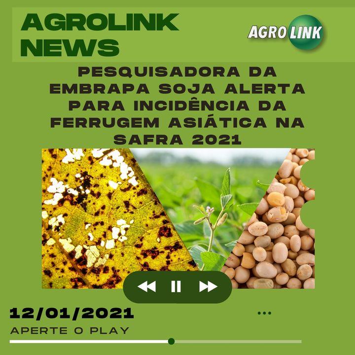 Agrolink News - Destaques do dia 12 de janeiro