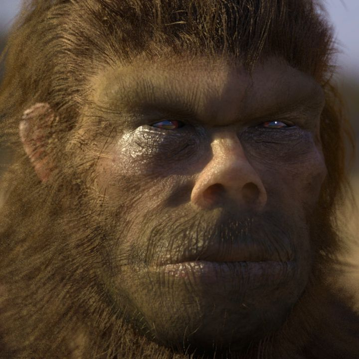 In California, A Police Officer Saw The Body Of A Huge Bigfoot Near The Highway