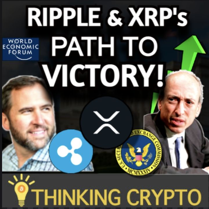 Ripple XRP Path To Victory Over The SEC - Ripple CEO World Economic Forum Crypto Doc
