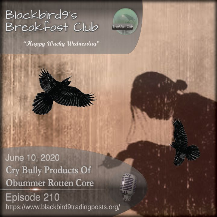 Cry Bully Products of Obummer Rotten Core - Blackbird9 Podcast