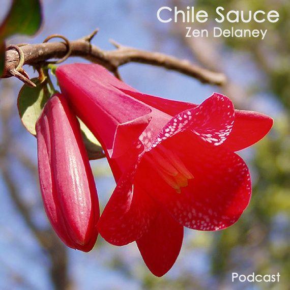 Chile Sauce with Zen Delaney on Lingo Radio June 26 2020