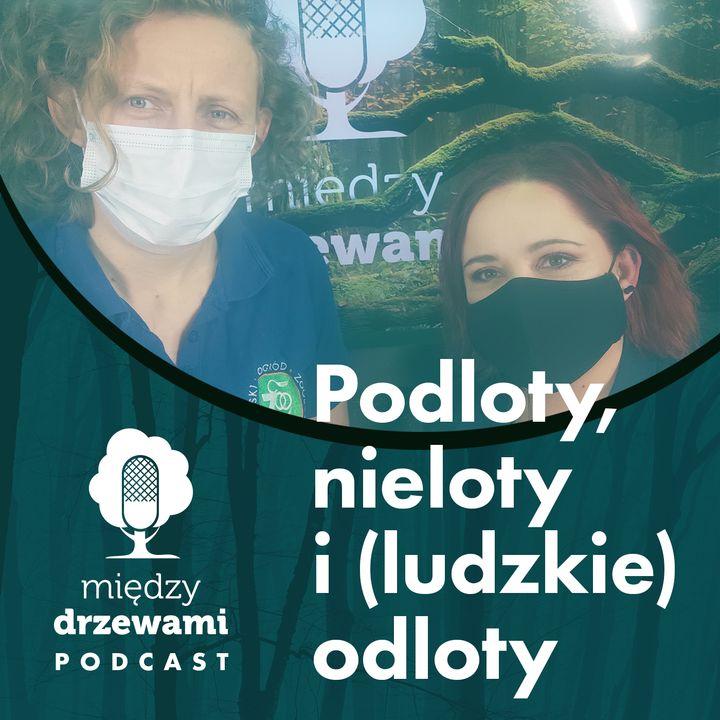 #59 Podloty, nieloty i (ludzkie) odloty [dr Agnieszka Czujkowska]