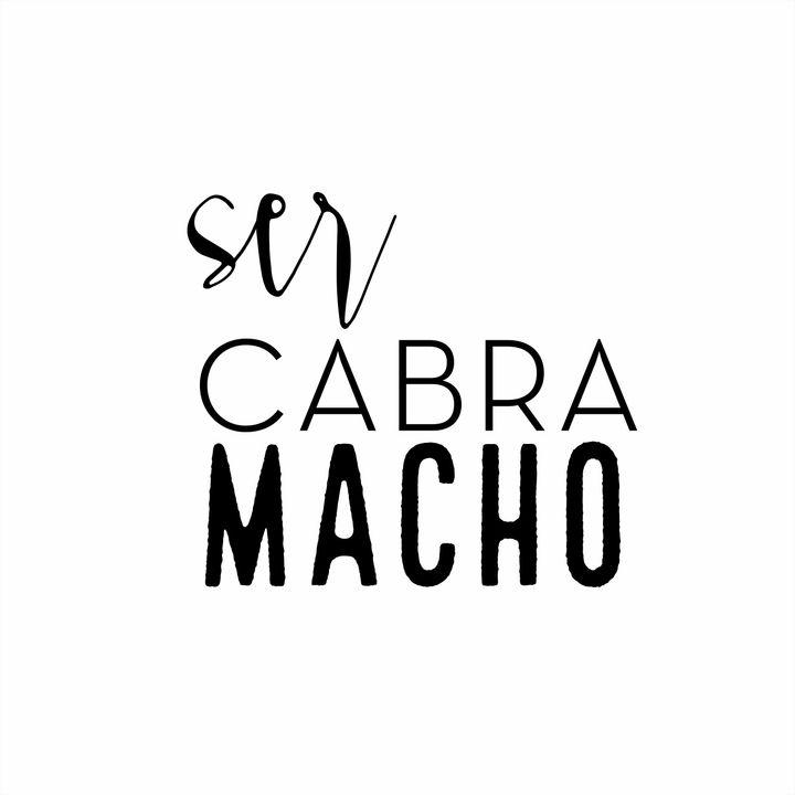 [LIVE] com o portal @camisinha_influencer da incrível Milka Freitas.