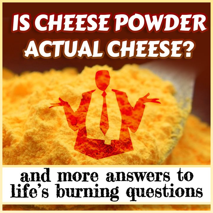 Is Cheese Powder Actual Cheese? (And more answers to life's burning questions)