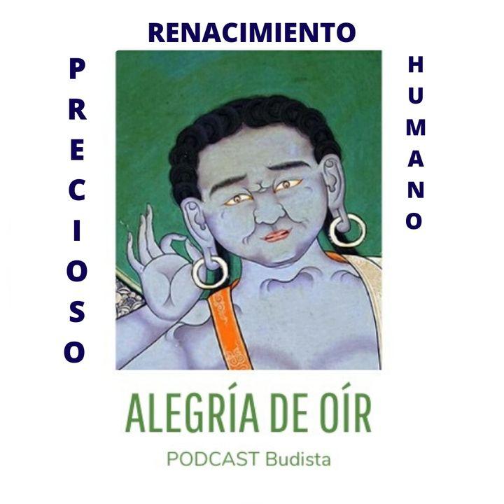 """Podcast N°6: """"Precioso Renacimiento Humano"""""""