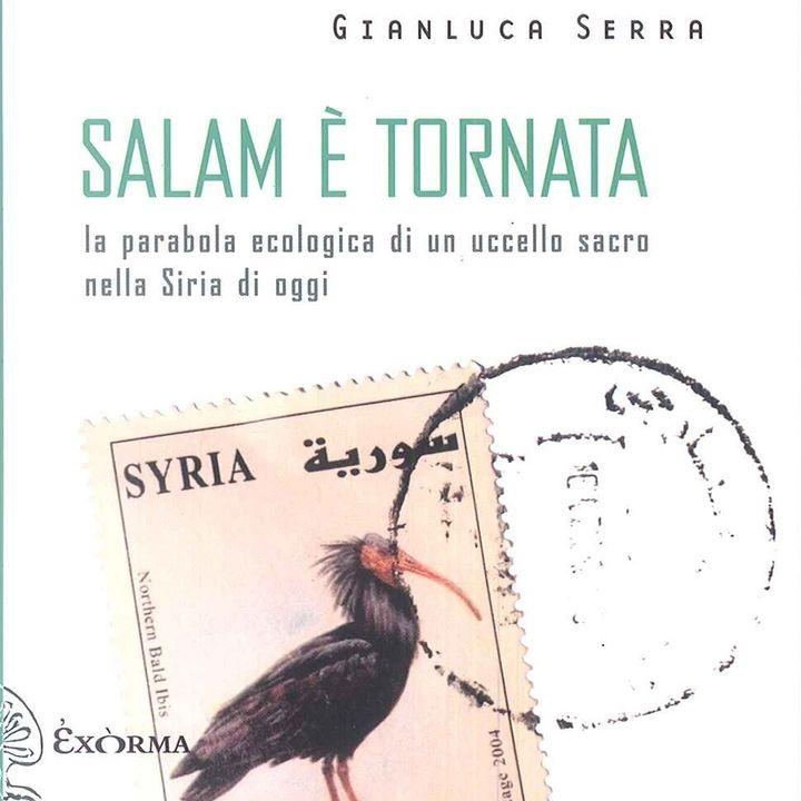 """Gianluca Serra """"Salam è tornata"""""""