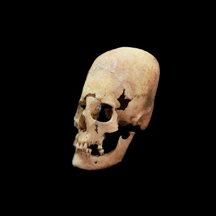 The Paracas Skulls - Brien Foerster Interview