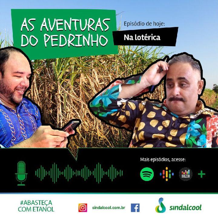 Episódio 2 - As aventuras do Pedrinho.mp3