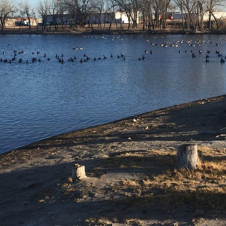 #152 - Chance Englebert Assumptions Dividing the Community