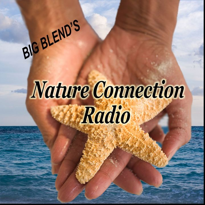 Nature Connection Radio