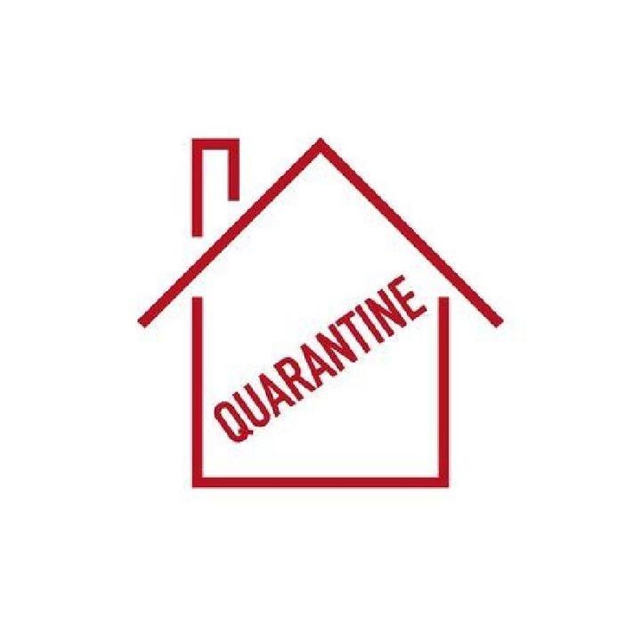 Quarantine Days | V(oice)LOG - Epi 01
