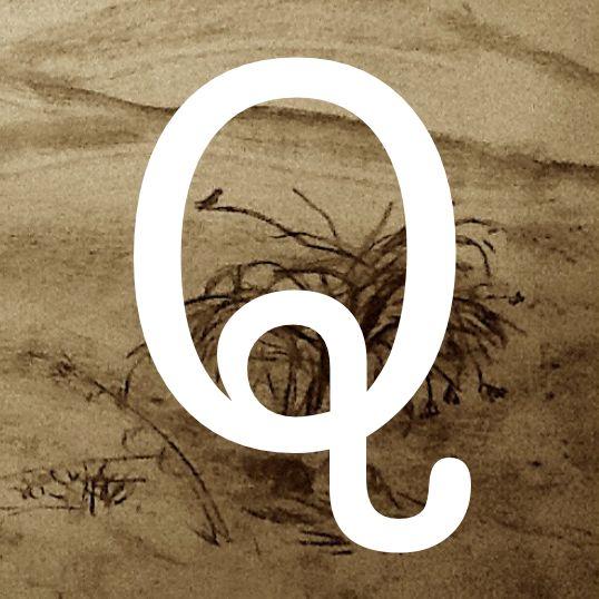 El Quijote. Parte 1. Capítulo 35.