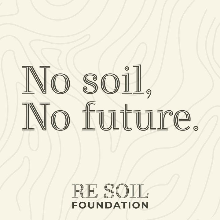 Le news di Re Soil Foundation