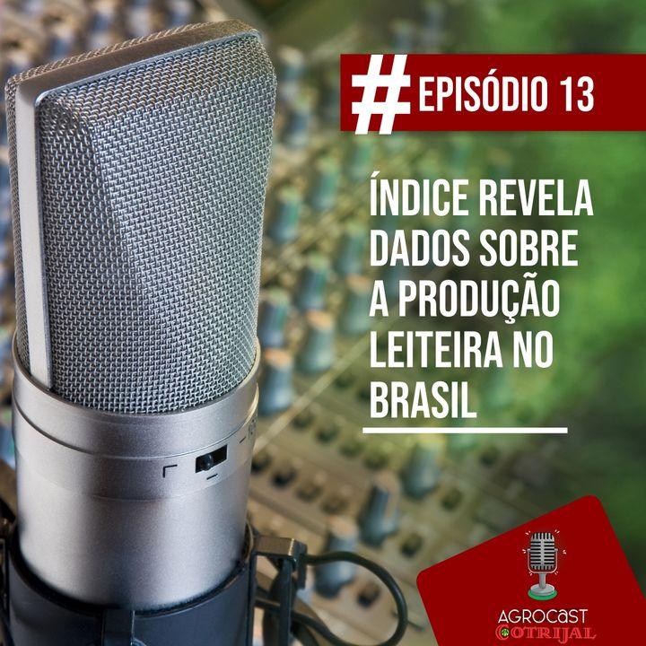 Índice revela dados sobre a produção leiteira no Brasil