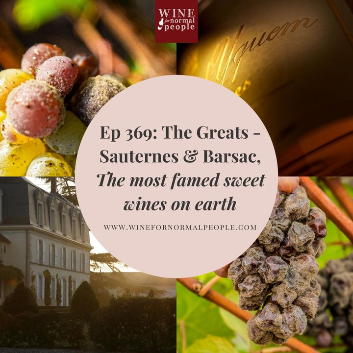 Ep 369: The Greats -Sauternes and Barsac