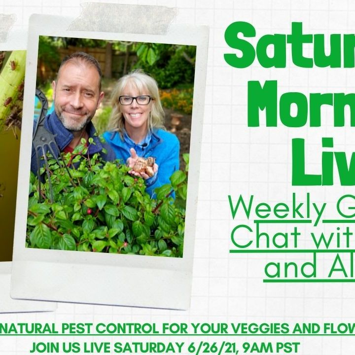 Saturday LIVE YT 6-26-2021 - Natural Garden Pest Control