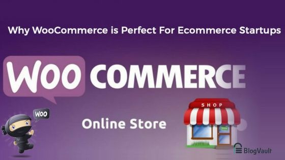 WooCommerce Store 5 Reasons Why WooCommerce is Perfect for Ecommerce Startup!