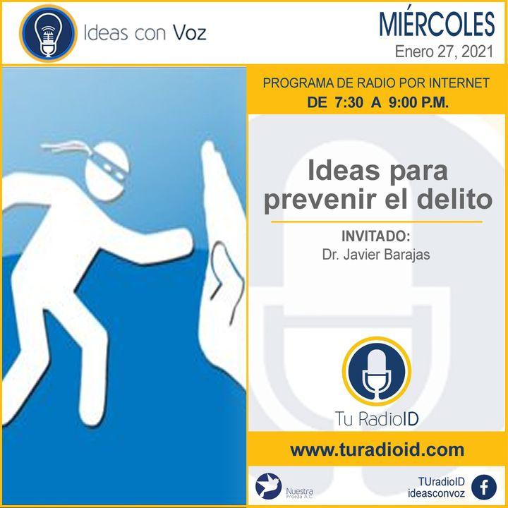 Ideas para prevenir el delito