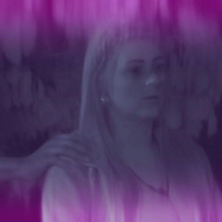 Big Brother UK 2017: The Woodland Distrust