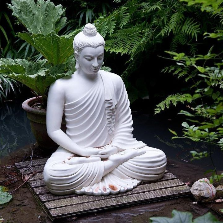 Quarto dia de Meditação