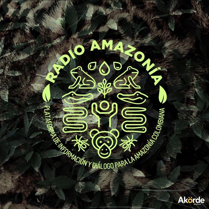 V Evento de Macroterritorio: Diálogos de conflictividades y estrategias participativas de construcción de paz en la Amazonía Suroriental