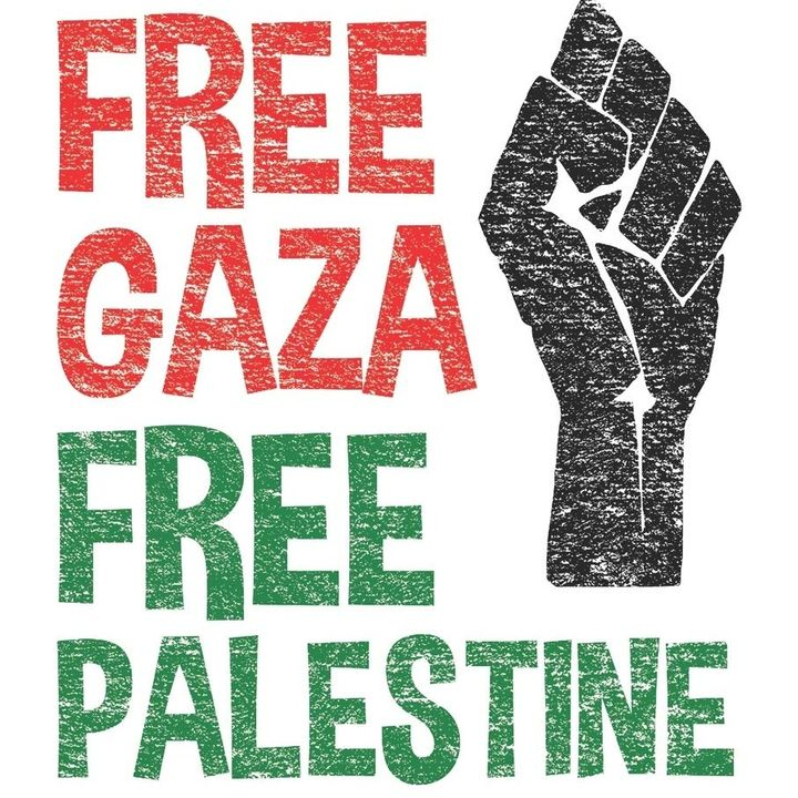 La Zona 12 - Free Palestine