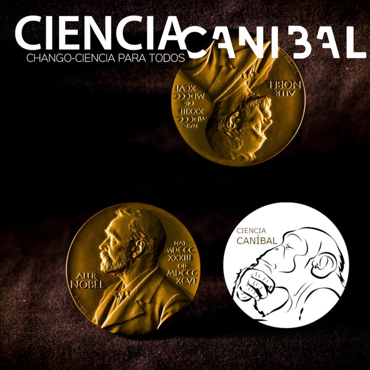 4-07 Premios Nobel 2020