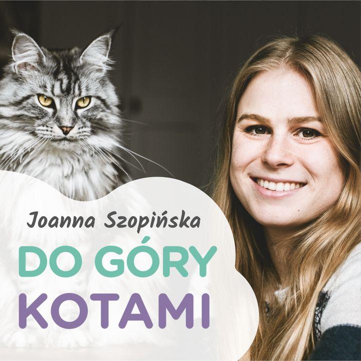 DGK 006: Czy hodowle kotów są potrzebne? - Dorota Szadurska (Zrozumieć kota)