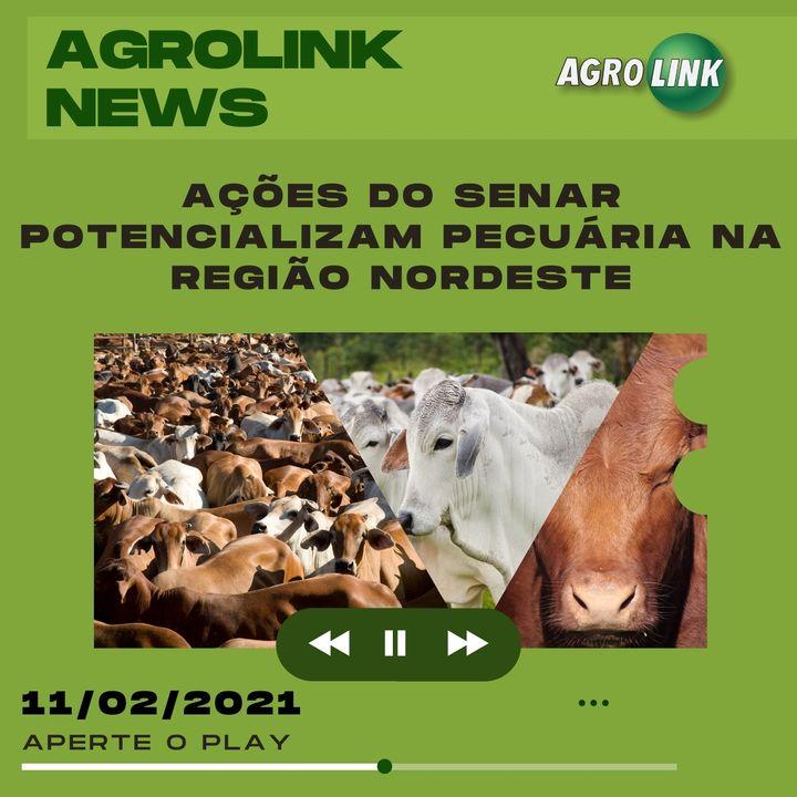 Agrolink News - Destaques do dia 11 de fevereiro