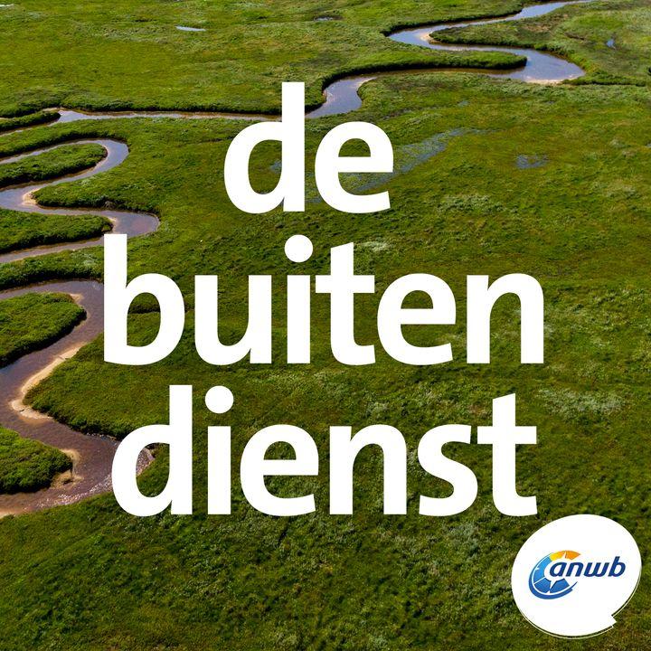 Op verkenning in de kwelders van Texel