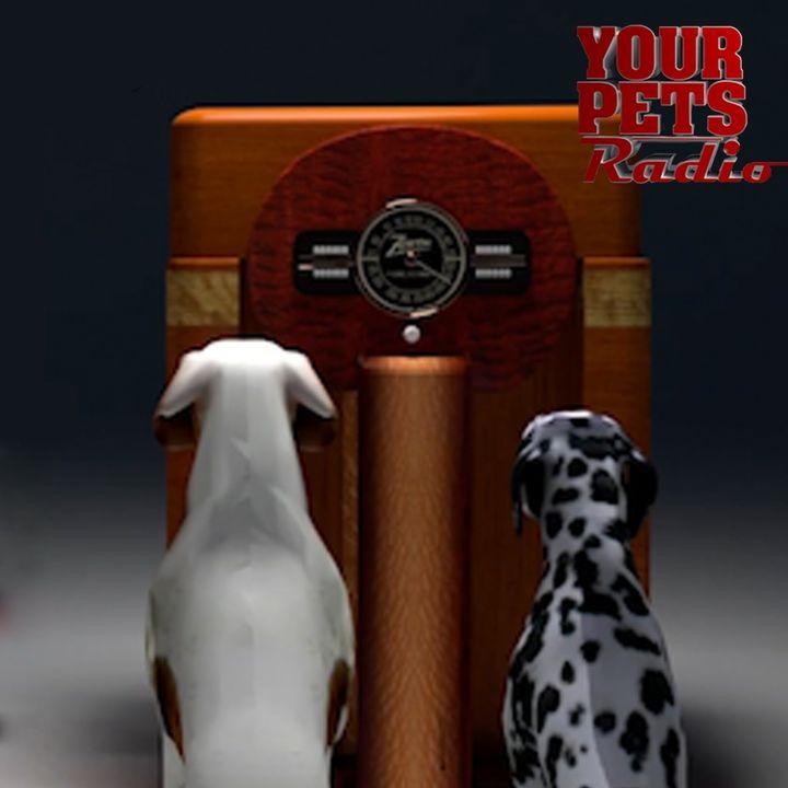 Your Pets Radio™