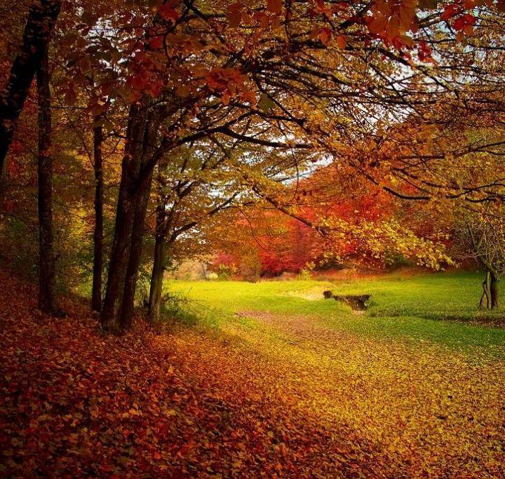 #sarnano Au secours, on est en automne!