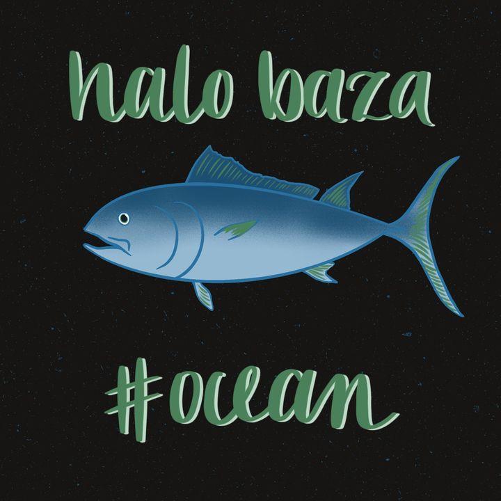 #ocean_Halo baza 17_Ciemne strony rybołóstwa