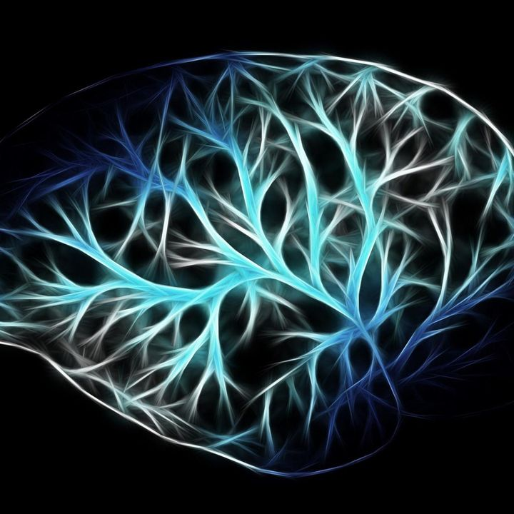Brain and Cognitive Health