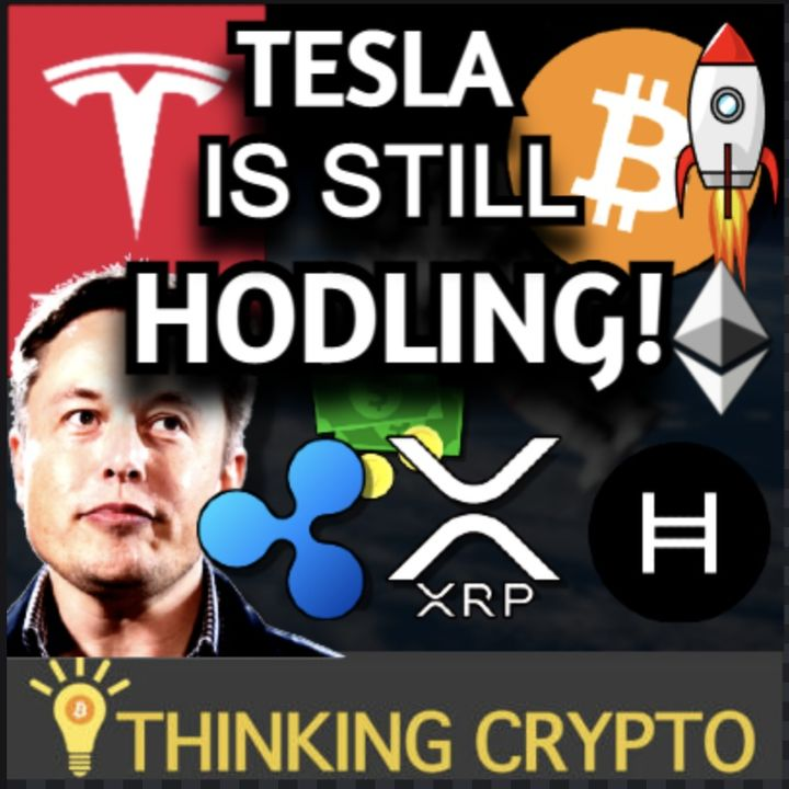 Tesla Still Holds $1.5B in Bitcoin - HBAR Filecoin - SEC Ripple XRP Hinman Deposition - Bitcoin Miner $100M IPO