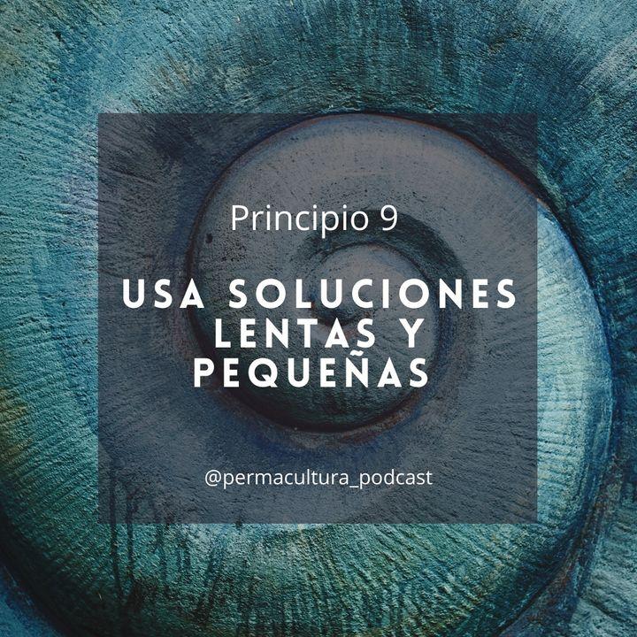T1E14 - Principio 9 Usar soluciones lentas y pequeñas