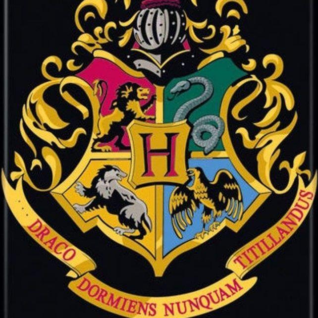 Episode 8: Harry Potter — Hogwarts House Resorting