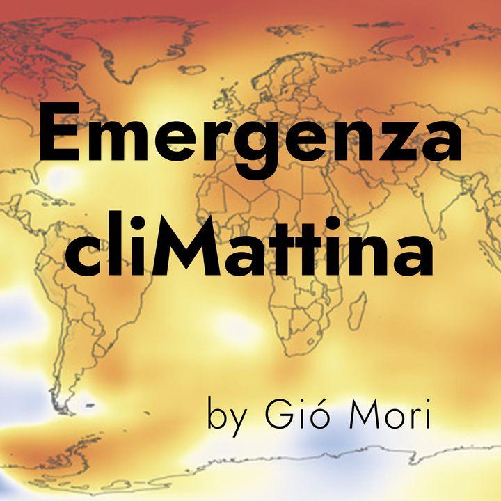 #34 - I clamorosi benefici di tassare le emissioni (e investire sull'ambiente), con T. Felici - economista ambientale