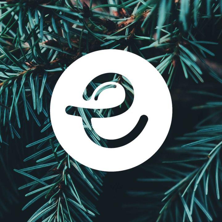 Vanilje og Kanel på Det Bæredygtige Julebord