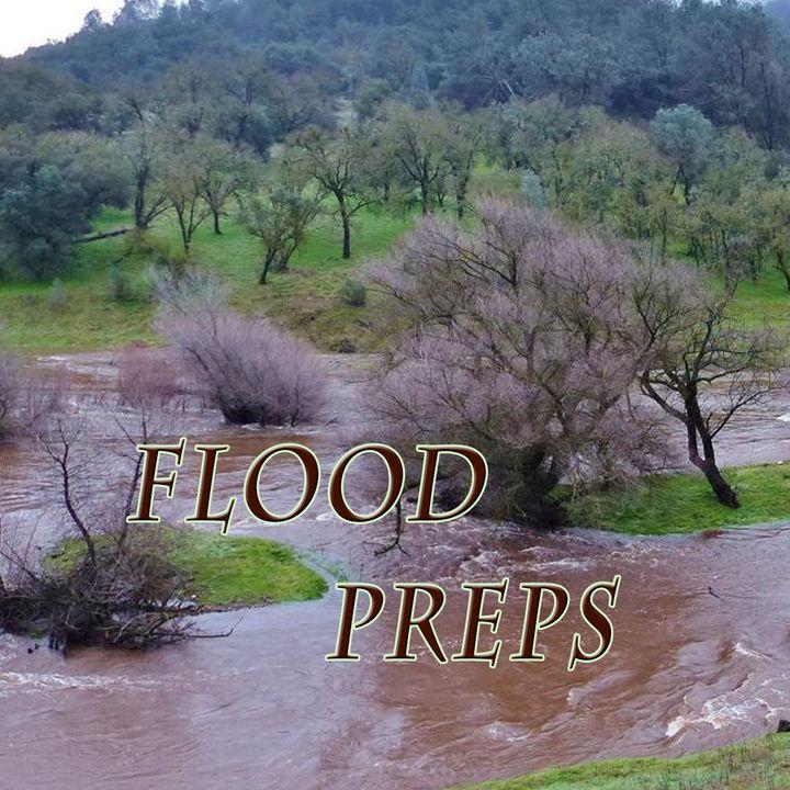 Flood Preps, Genesis 7:5-10