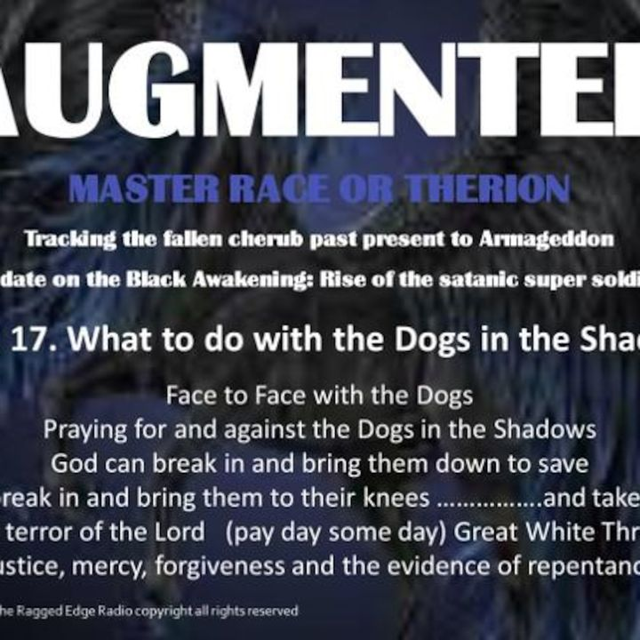 AUGMENTED PART 17 WHAT DO YOU DO WITH THE DOGS?