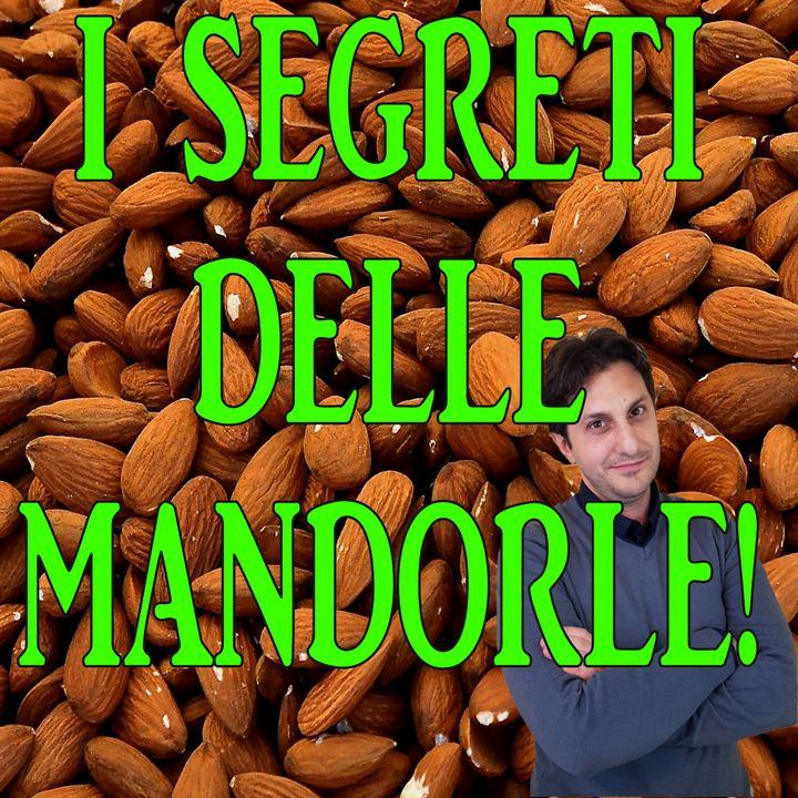 Episodio 101 - LA MANDORLA ED I SUOI SEGRETI - Conosciamo i pregi delle mandorle